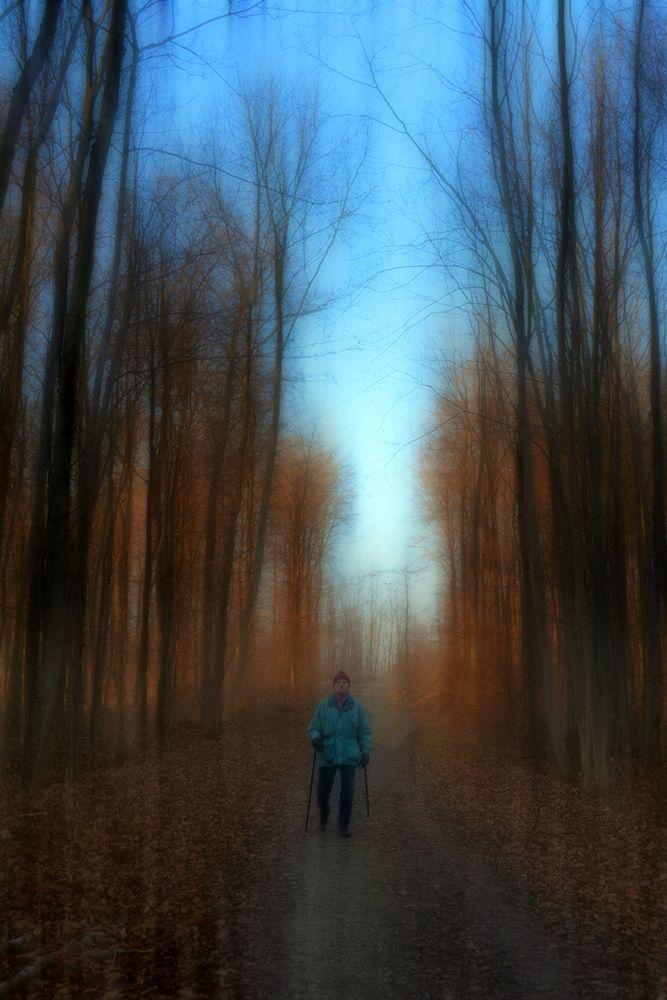 nordic walking -2-