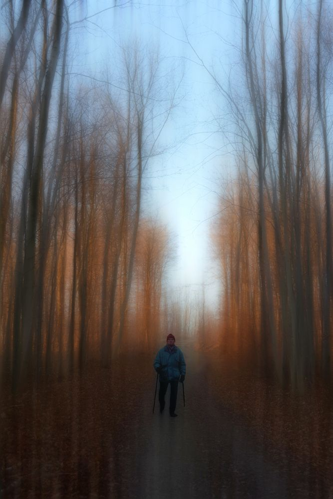 nordic walking -3-