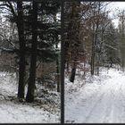 _ Nordic Walking _