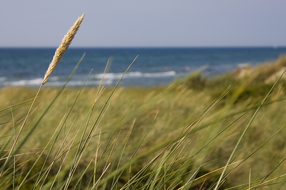 Nordisch by Nature