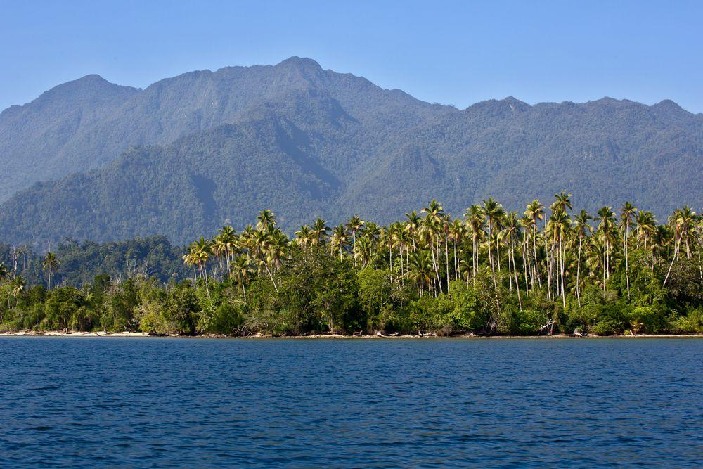 Nordküste Seram- Molukken