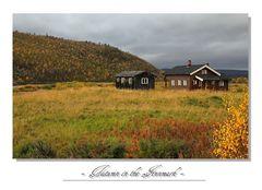Nordland_2011_13
