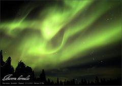 Nordlicht 31.12.2016