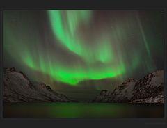 Nordlicht am Ersfjorden