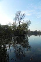 Nordpark 1 - November 2011