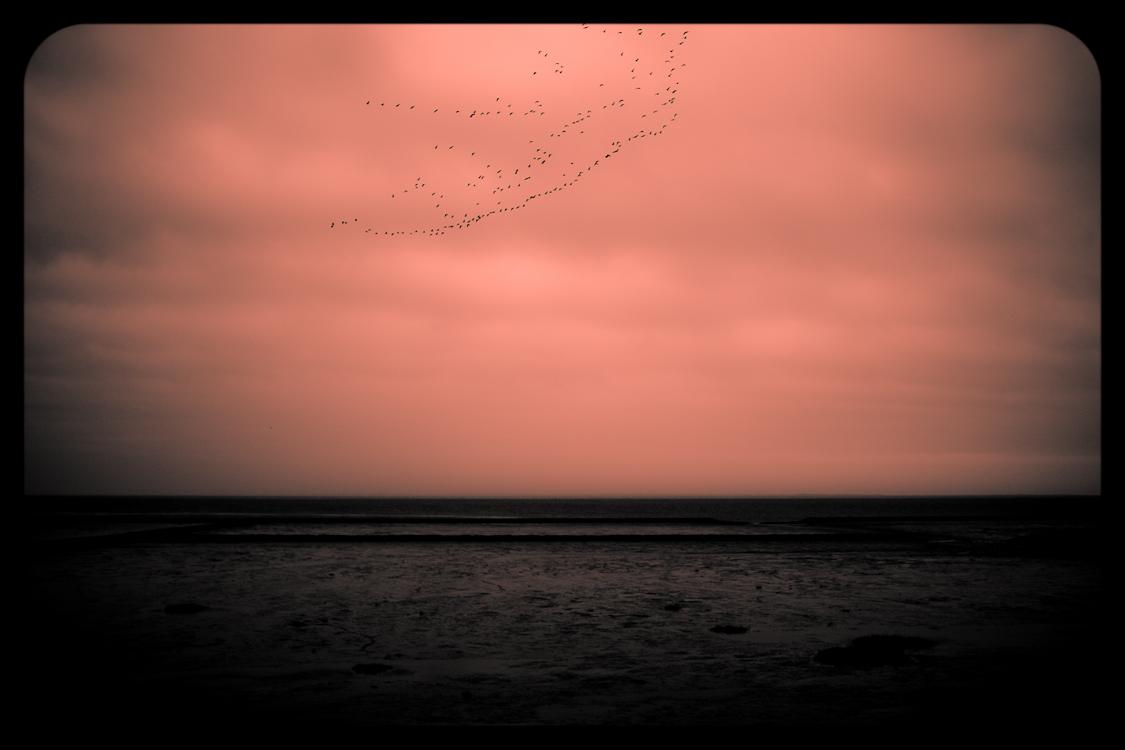 Nordsee 4