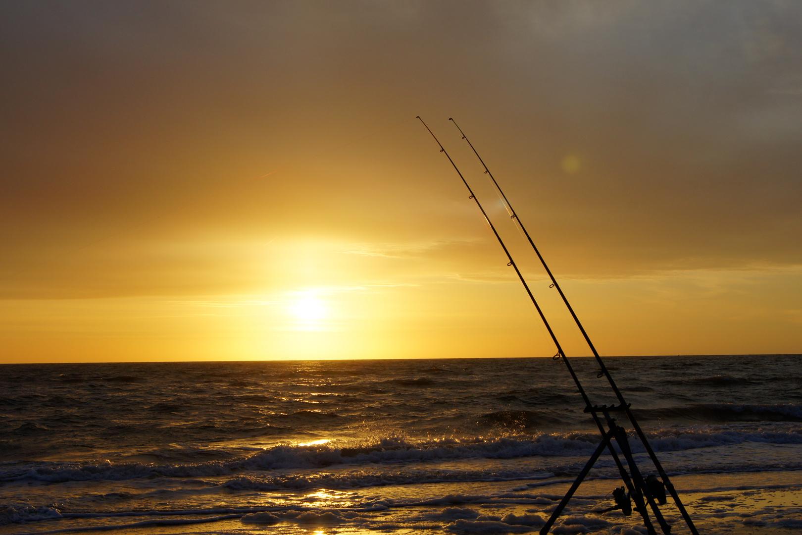 Nordsee Brandungsfischen