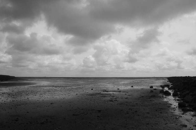 nordsee ebbe