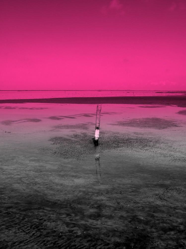 nordsee in pink