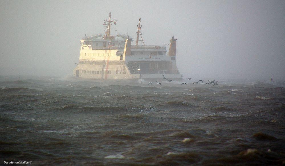 Nordsee ist Mordsee , nicht wahr Heim-Ju