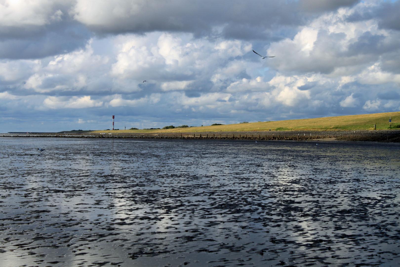 nordsee wattenmeer jadebusen foto bild landschaft meer strand watt bilder auf. Black Bedroom Furniture Sets. Home Design Ideas