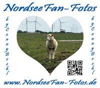 NordseeFan-Fotos