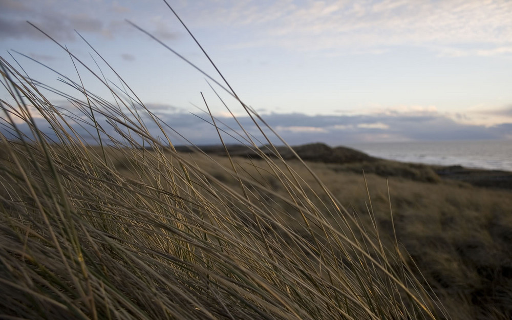 Nordseeküste in der Abenddämmerung