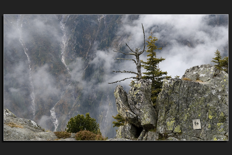 nordtirol eins plus