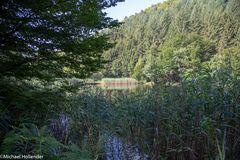 NordVogesen-Elsass 2018-17