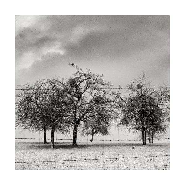 Normandie sous la neige