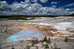 Norris Geysir Basin, Yellowstone NP.