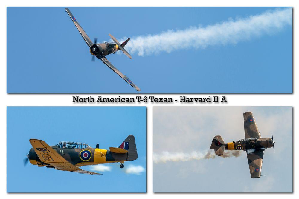 North American T-6 Texan - Harvard II A