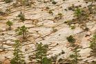 North Rim Trail - Utah