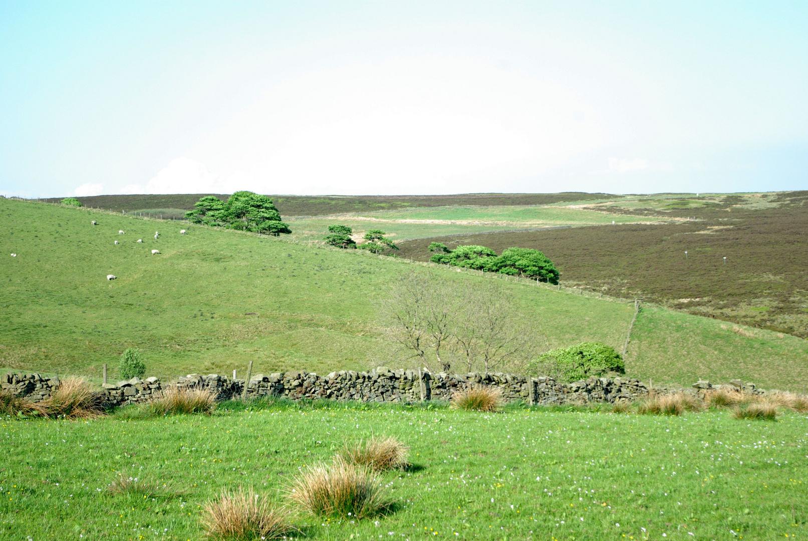 ...North West England 2...