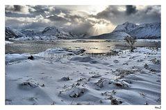Northern Landscape...