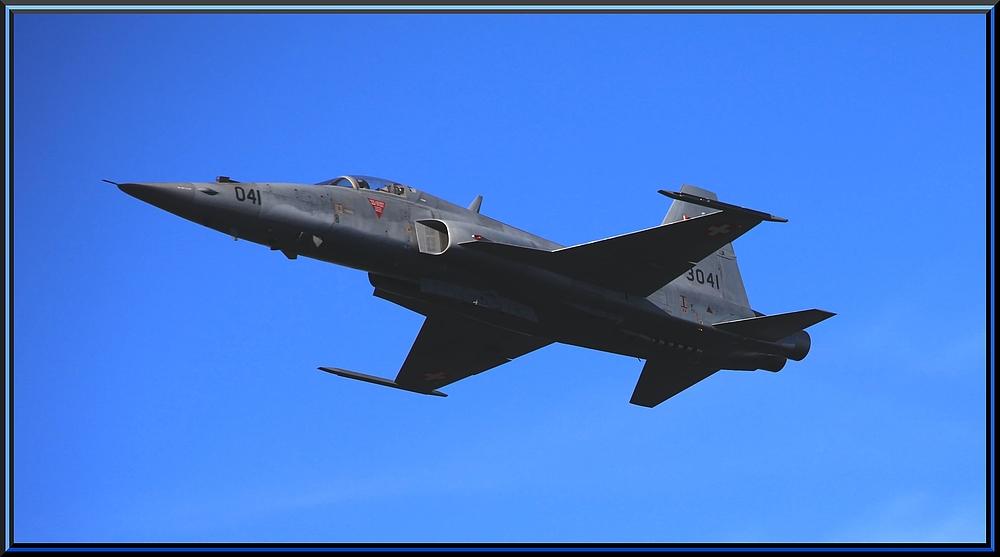 Northrop F-5E Tiger II  ~ AXALP 2010