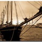 Norvegia 2007 - Al porto di Oslo