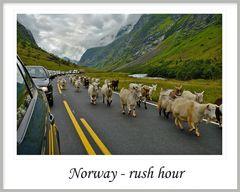 Norway - Rush Hour ...