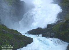 """Norwegen 25 """" FLAMM-FALL """""""