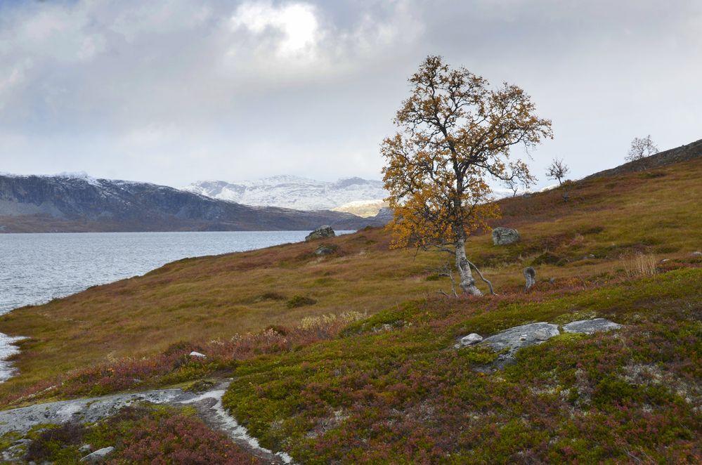 Norwegen ende September