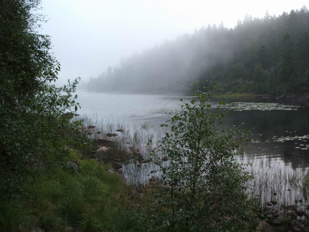 Norwegen - Früh am Morgen
