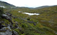 Norwegen - Vikafjell