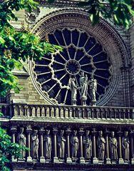 Notre Dame.      ..120_2607