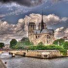 Notre Dame de dos