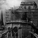 Notre Dame de Paris # 3