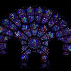 Notre-Dame de Paris Kathedrale, Westrose teilw. hinter Orgel