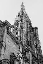 Notre Dame de Strasbourg - 02