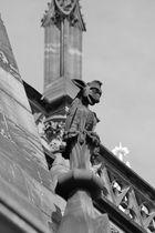 Notre Dame de Strasbourg - 10