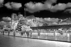 Notre Dame en blanc-noir