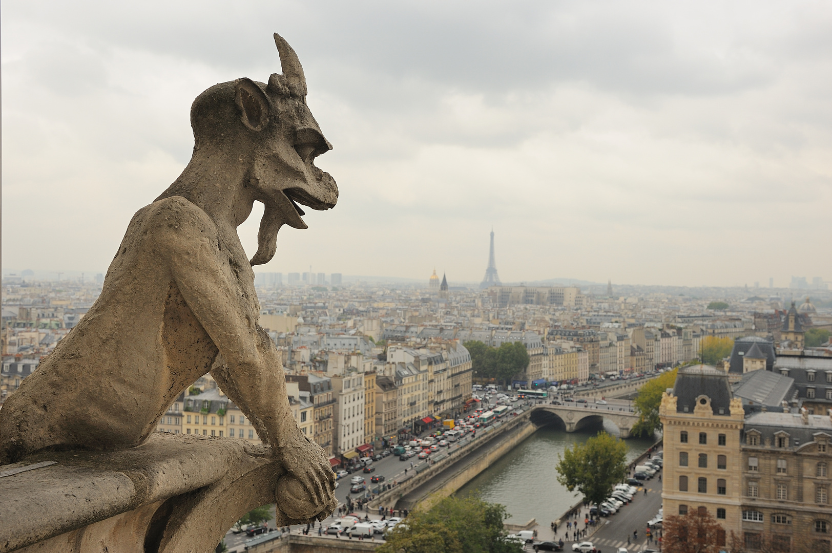 Notre Dame : sui tetti di Parigi