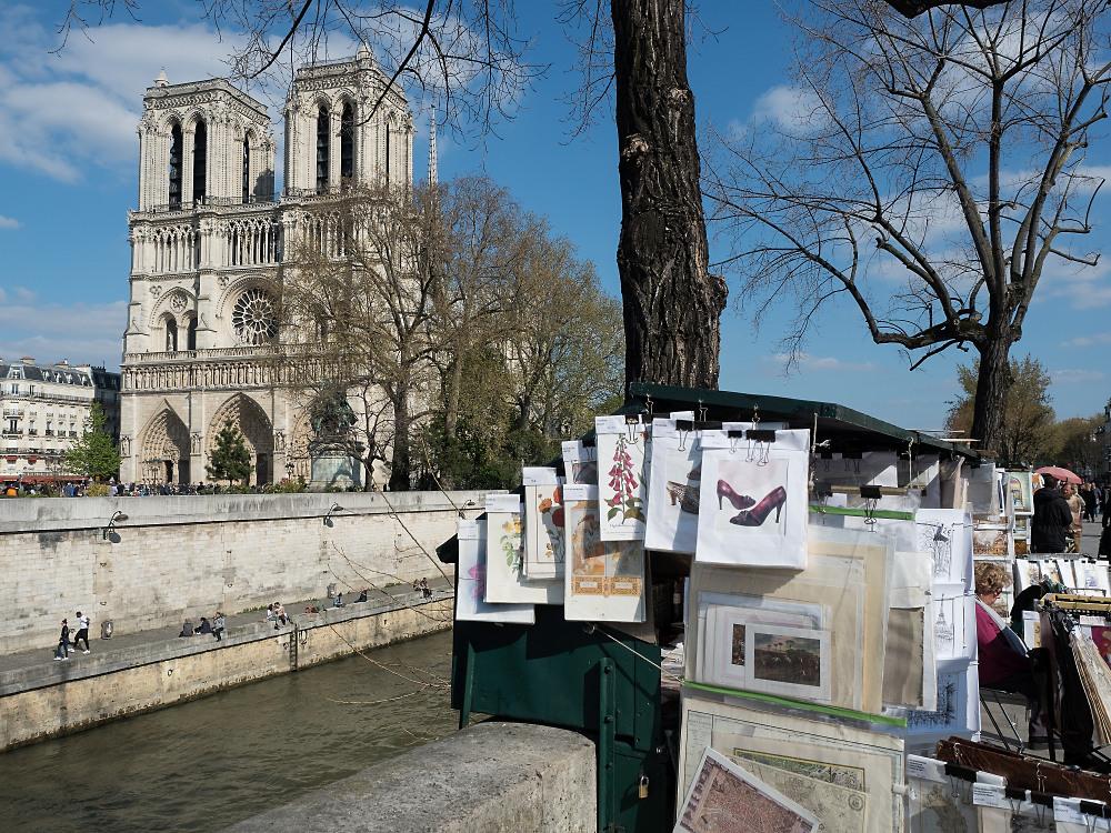 Notre Dame und Buchstände