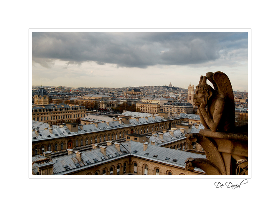 Notre Damme Top View