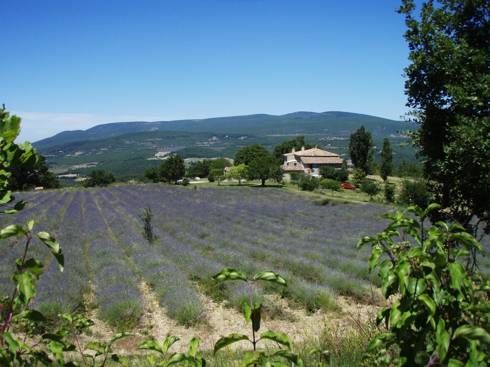 notre refuge dans les Alpes de Haute provence