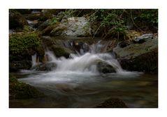 notre rivière à sa source