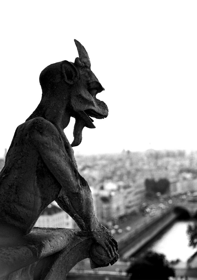 Notre_Dame_2016_Wächter