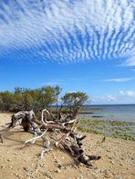 Nouméa - L'Île aux canards 13 - Une autre vue vers l'ouest
