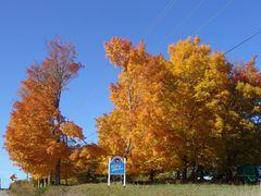 Nova Scotia im Herbst