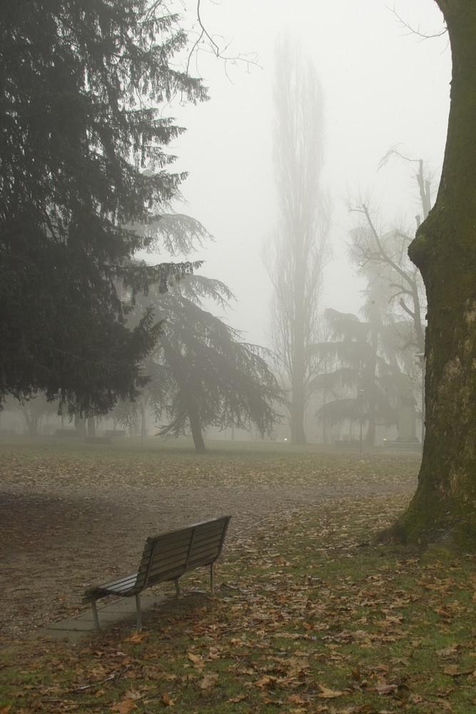 Novara nella nebbia