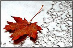 November auf dem Bistrotisch