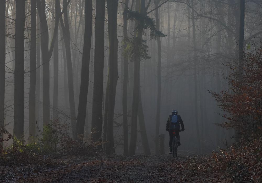 November biking